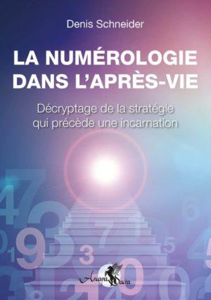La numérologie dans l'après-vie - Décryptage de la stratégie qui précède une incarnation