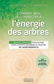 Comment bien se connecter à l'énergie des arbres