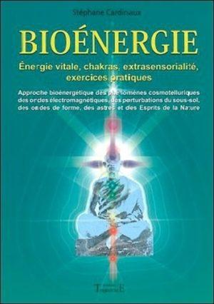 Bioénergie. Approche bioénergétique des phénomènes cosmotelluriques des ondes électromagnétiques, des perturbations du sous-sol des ondes de forme, des astres et des Esprits de la Nature