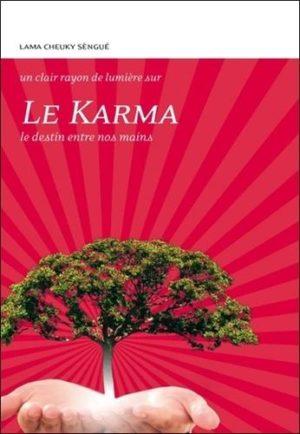 Le Karma. Le destin entre nos mains