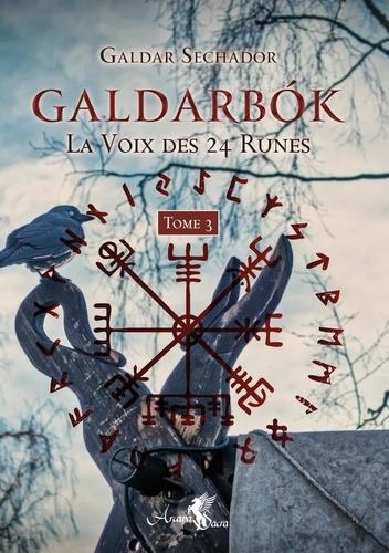 Galdarbok. La voix des 24 runes. Tome 3